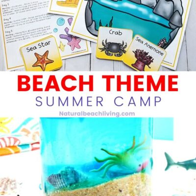 Beach Theme Summer Camp Activities for Kids