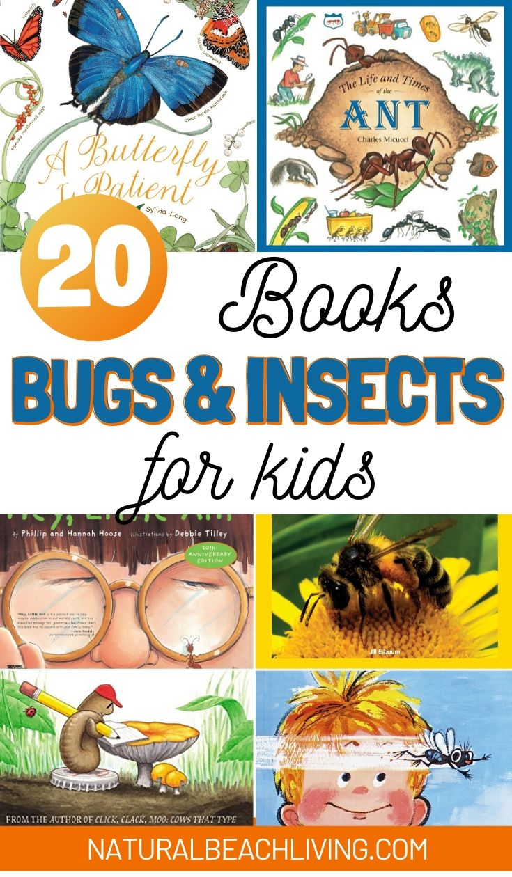 20 Bug and Insect Books for Kids
