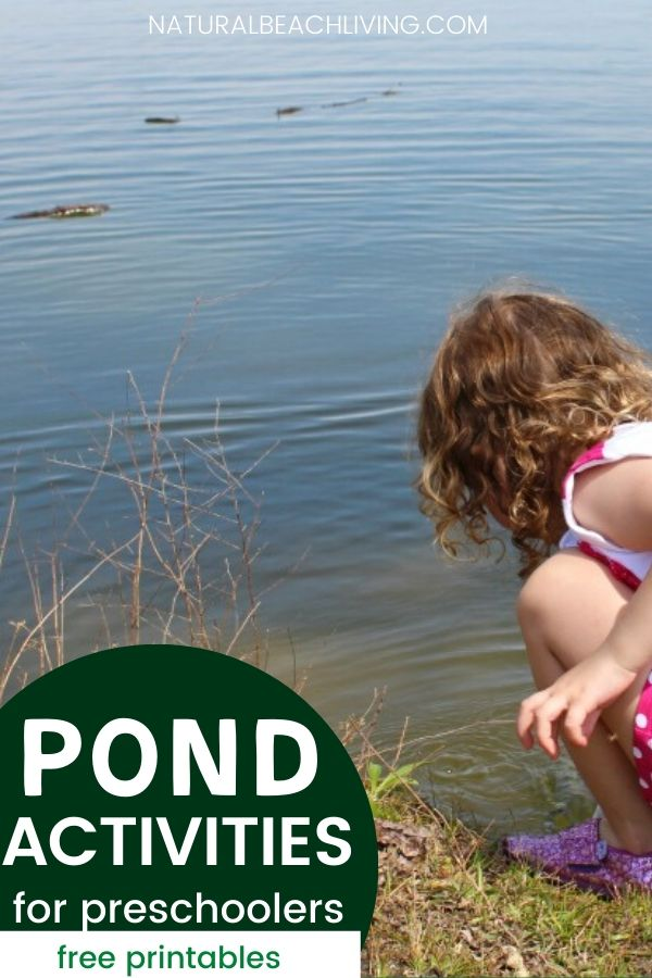 Pond Theme Activities for Preschoolers, Preschool STEM activities with Free Printables, Pond coloring pages for Kids and Free Preschool skills Printables, Montessori Pond Theme Activities, Natural Learning, outdoor learning with Science and Math activities for Kids
