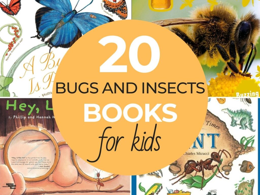 If you are looking for great Bug and Insect books you should check out these! There are insect books for kids that would be great additions to your insect and bugs theme or unit study. They're so much fun and the kids will love them.