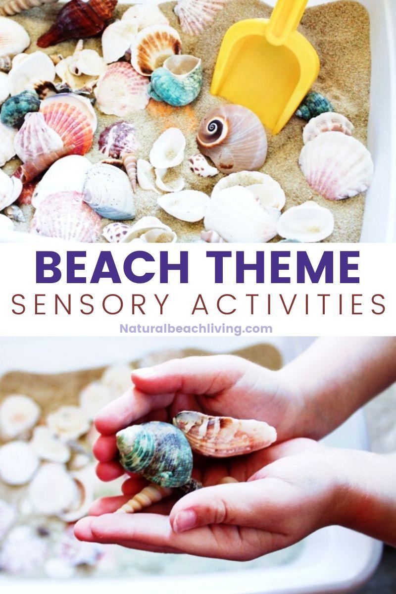 Seashells Sensory Bin – Ocean Theme Preschool