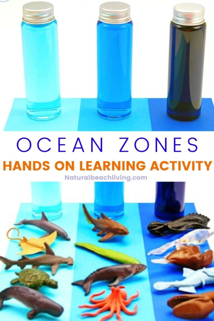 Ocean Zones For Kids and Learning About The Ocean, Teach your kids about the 3 oceans zones: sunlight, twilight and midnight. Plus, get free printable zones of the ocean worksheets to reinforce everything they learn in an ocean theme!
