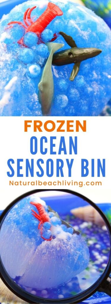Consider these Ocean Activities for Preschoolers some of the best and the most fun you'll find! Frozen ocean sensory bin. This fun science sensory bin will keep Kids having a blast exploring the different ways to melt ice as they rescue ocean animals in this frozen ocean sensory bin! Frozen Animal Rescue Kids Activity
