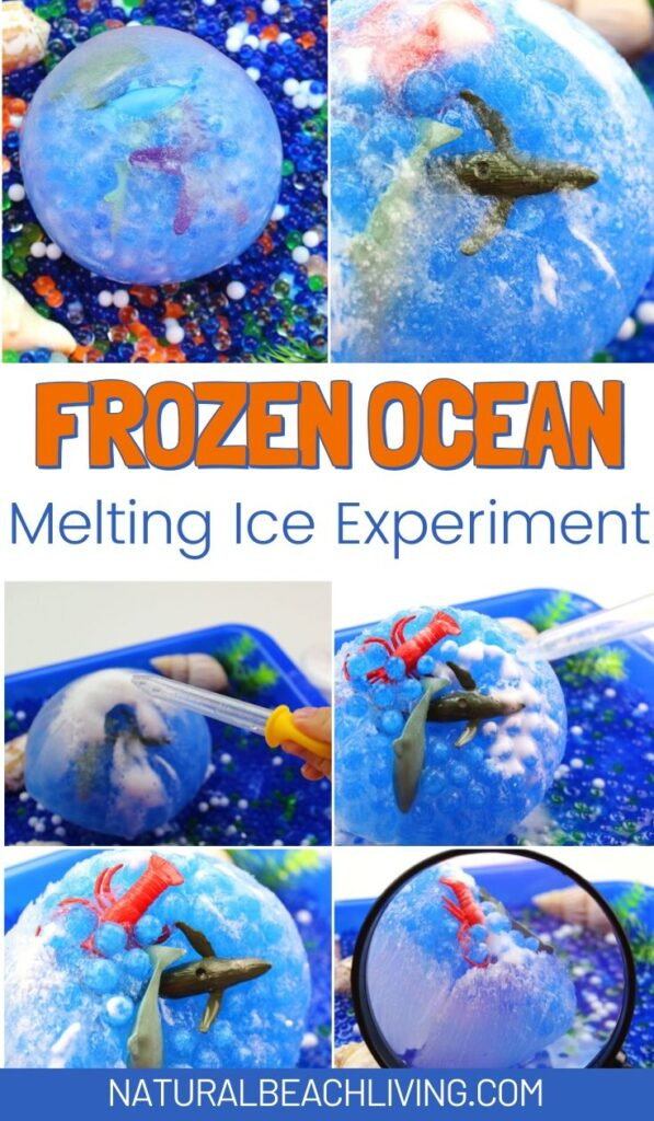 Frozen ocean sensory bin. This fun science sensory bin will keep Kids having a blast exploring the different ways to melt ice as they rescue ocean animals in this frozen ocean sensory bin! Frozen Animal Rescue Kids Activity