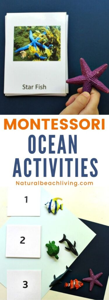 These free ocean printables and Montessori ocean activities are for preschoolers through early elementary. Perfect for homeschooling or for an ocean preschool theme