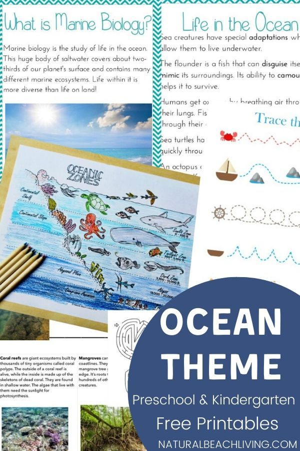 Teach your kids about the oceans zones and Ocean life with these ocean theme activities. Plus, get free printable zones of the ocean worksheets to reinforce everything they learn!