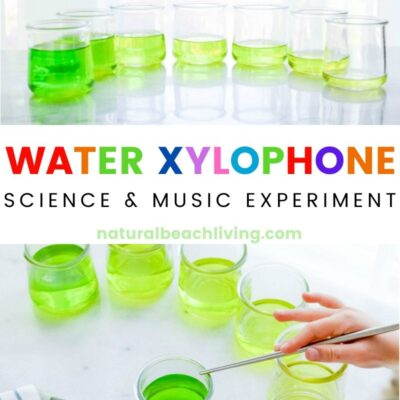 How to Make a Water Xylophone – Music and Science Experiments for Kids