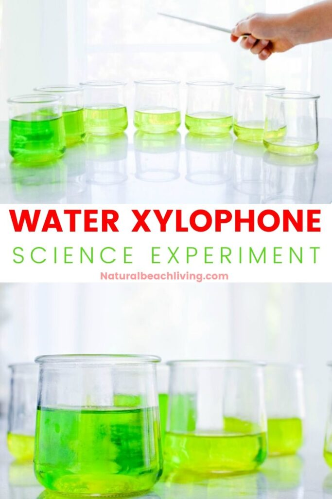 See How to Make a Water Xylophone and Learn about how sound waves travel, different pitches, and the science behind these perfect Music Preschool Activities. Plus, have fun playing on your own homemade DIY water xylophone musical instrument