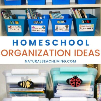 The Best Homeschool Organization Ideas That Work for Everyone