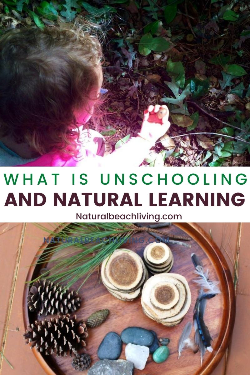 What is Unschooling and Natural Learning? How to Start Unschooling