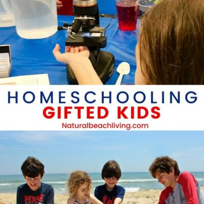 Homeschooling a Gifted Child – Everything You Need to Know