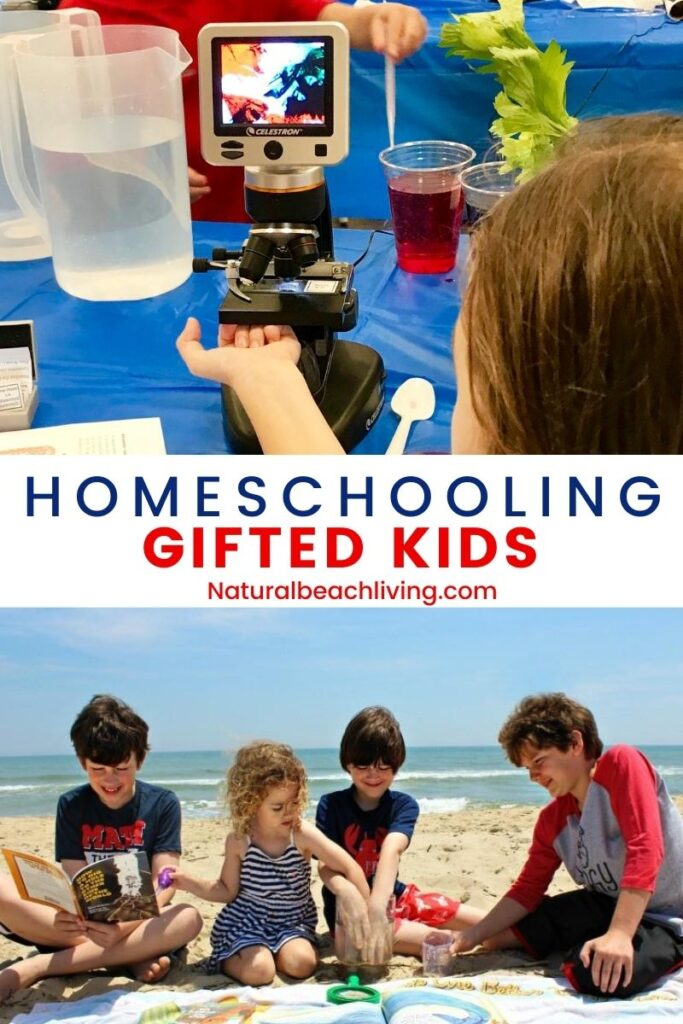 Homeschooling a Gifted Child. Find all of the tips, ideas, curriculum reviews, and information you need for homeschooling. Plus, Homeschooling Methods for Gifted Kids and the best ways to homeschool successfully.