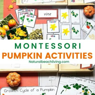 All About Pumpkin Unit Study – Pumpkin Lesson Plans and Activities