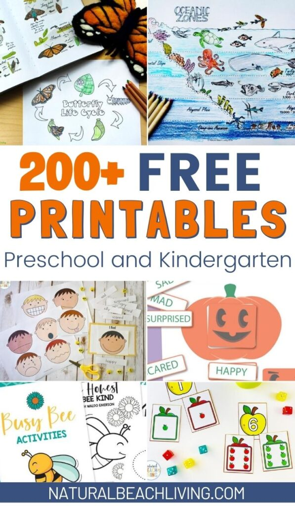 300+ Free Preschool Printables for a large variety of subjects and themes such as All About Me, the five senses, life cycles, counting, princess, Unicorns, colors, Math Printables, Preschool and Kindergarten Worksheets and Activities for Free