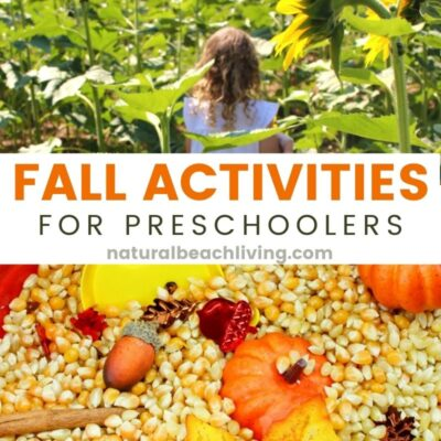 50+ Fall Activities for Preschoolers – Fun Fall Activities
