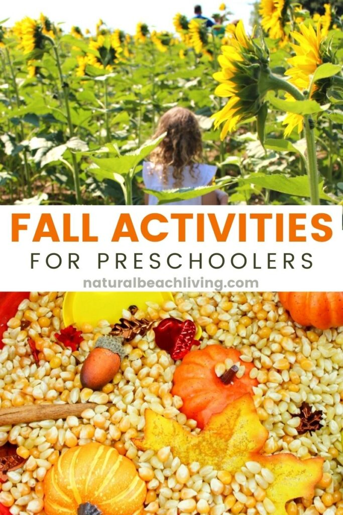 Fall Activities for Preschoolers and kids of all ages. Find Over 50 Fun Fall Activities with a Printable to Add hands on activities to your Preschool Themes that include pumpkins, thankful, trees, leaves, fall science, birds, apples, spiders, farm activities and so much more. Autumn activities and Fall Art and Crafts for Kids