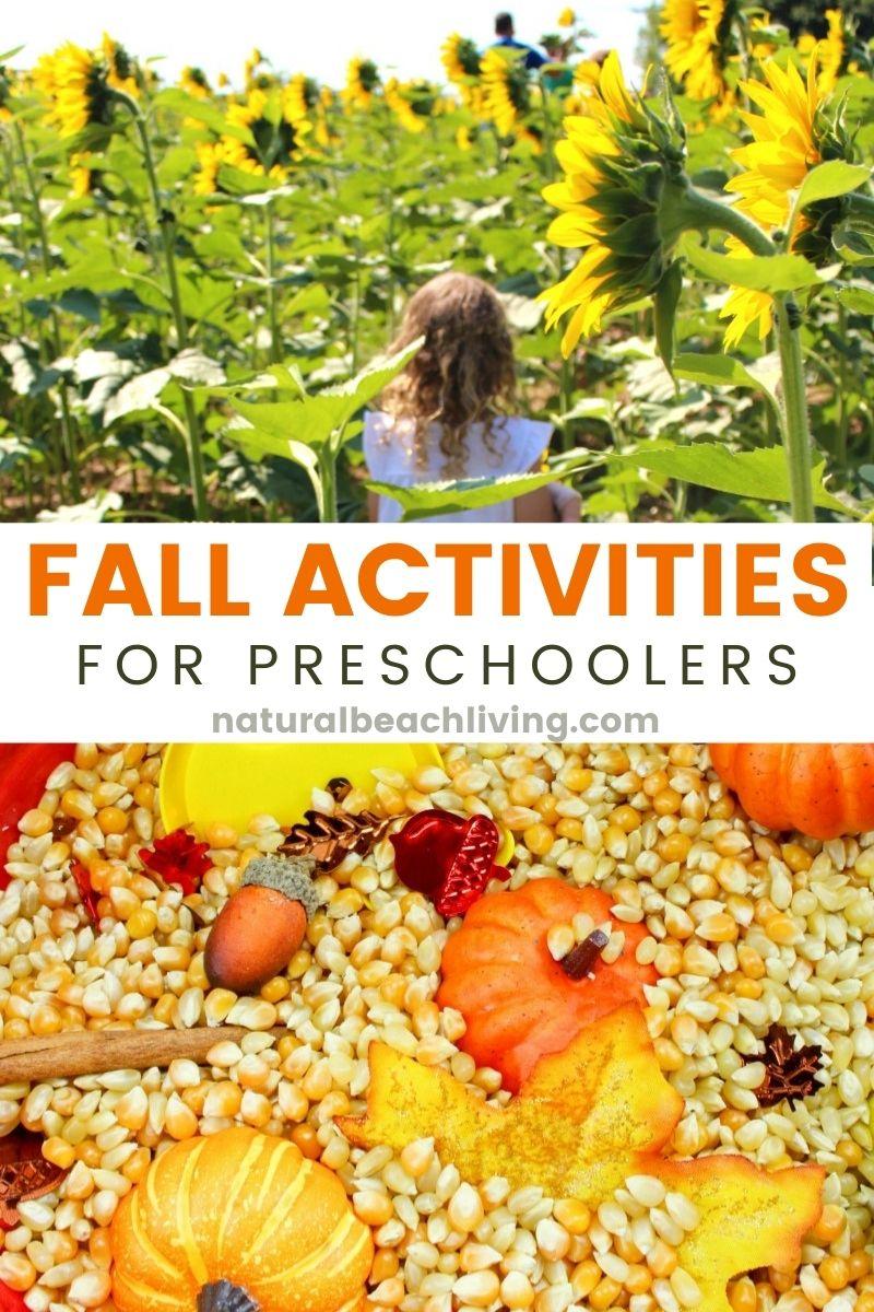 50+ Fall Activities for Preschoolers – Fun Fall Activities