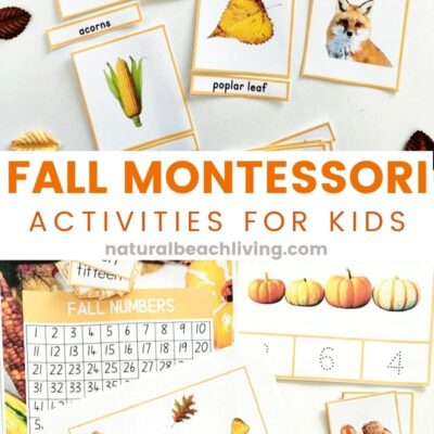 Fall Montessori Activities and Fall Lesson Plans for Preschool and Kindergarten