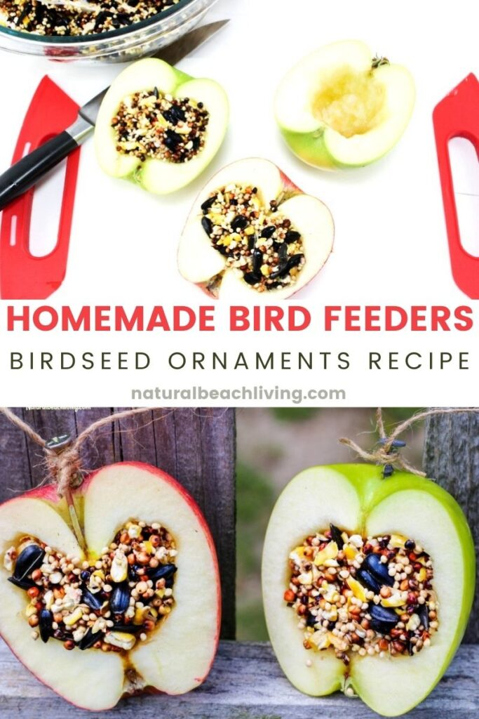 These APPLE BIRDSEED BIRD FEEDERS ARE THE BEST! You can Invite the birds to your yard with these Easy bird feeders. DIY bird feeders are a great family craft and a fun way to learn about nature. Adding in apples for fall is an extra bonus.