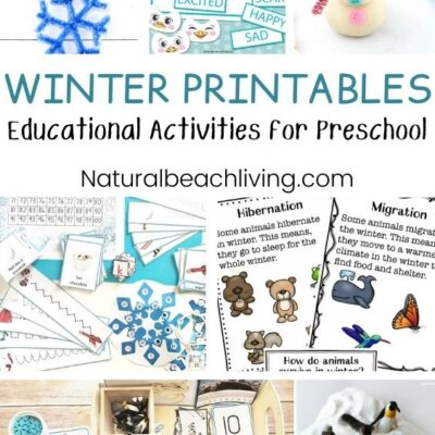 35+ Winter Preschool Themes and Lesson Plans