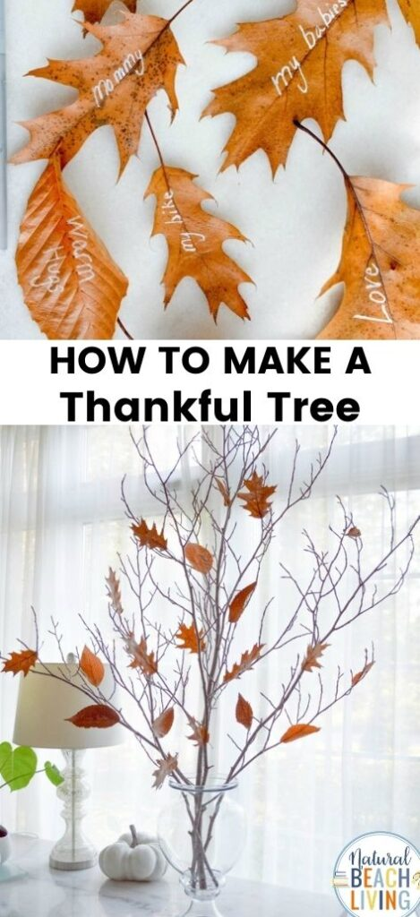 THE BEST DIY THANKFUL TREE! A Thankful Tree for your home or classroom. Thankful trees are a creative way to spend time cultivating gratitude with your family this holiday season. See How to make a thankful tree and Gratitude tree. This Fall Thankful Craft makes the Perfect Fall Decor and Reminder to Give Thanks Everyday.