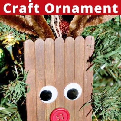 Rudolph Popsicle Stick Craft Ornament for Kids