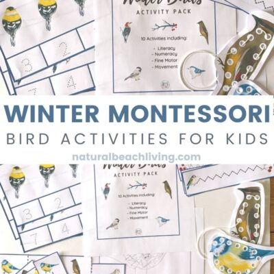 Montessori Winter Bird Activities