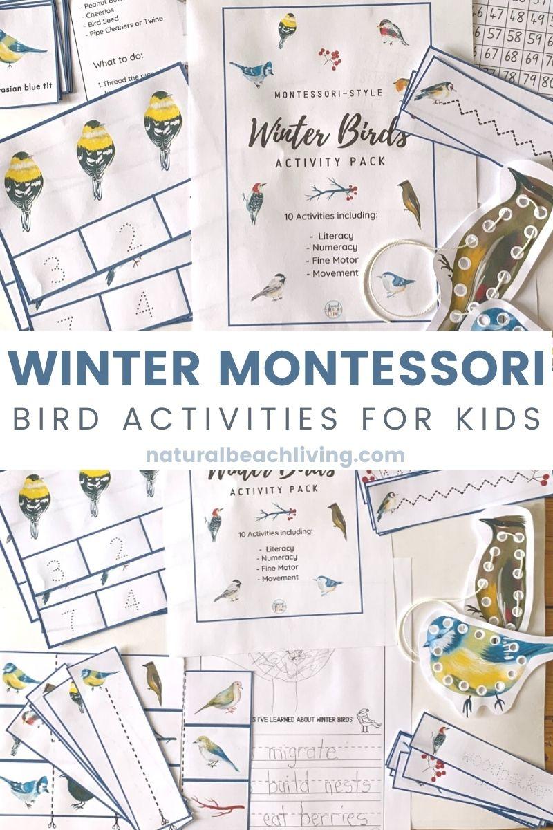 Montessori Winter Bird Activities