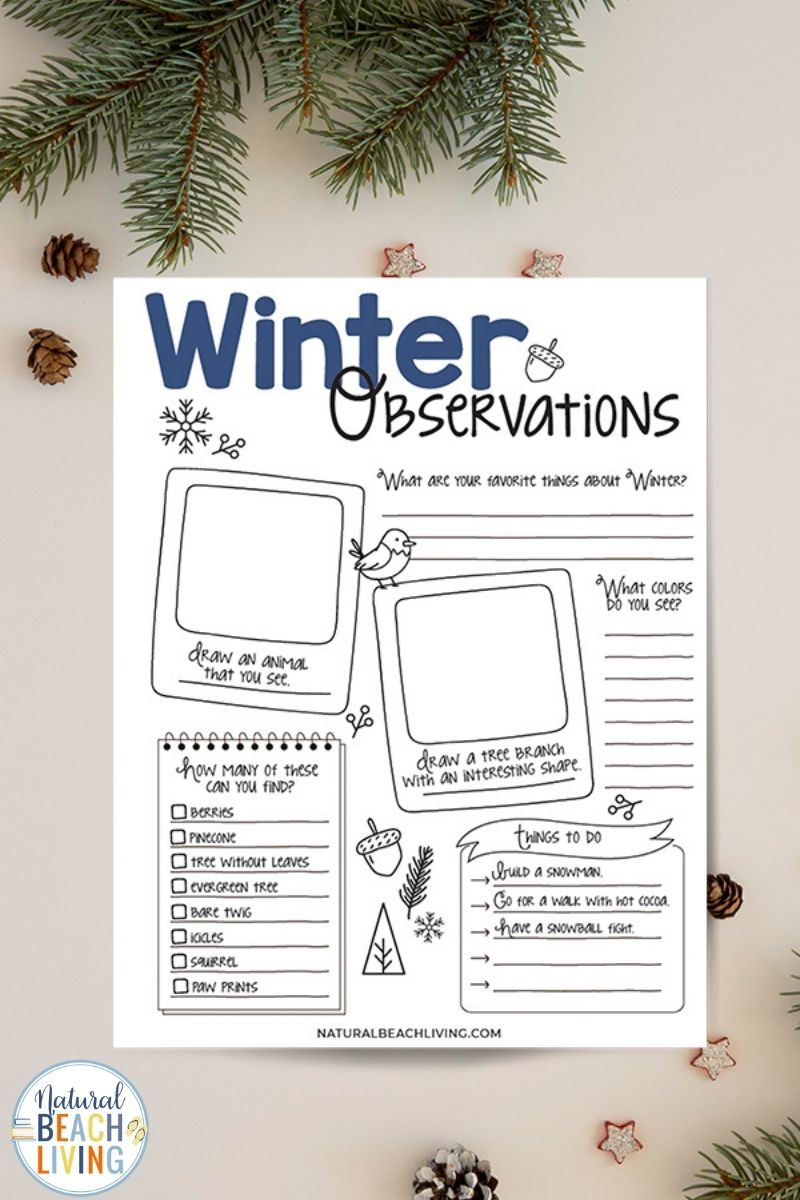 Winter Nature Study for Kids