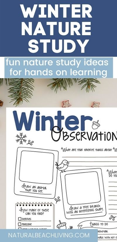 Your children will learn all about inter Nature through wonderful books, outdoor activities, science and activities in a winter theme nature study.