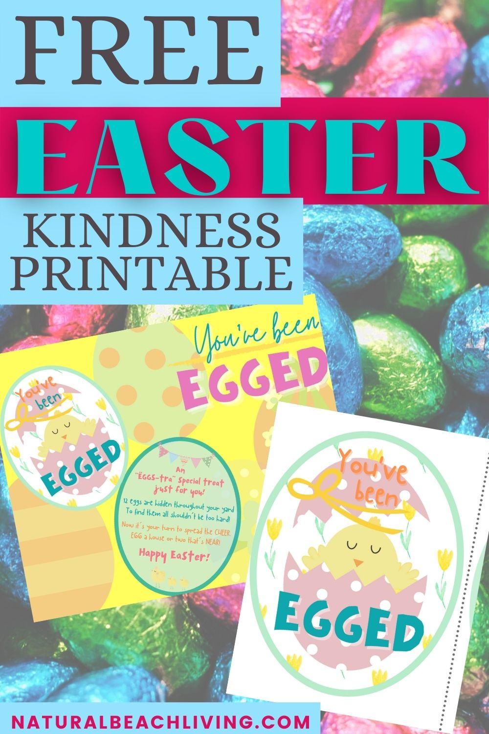 Spread a little extra kindness and cheer to your friends and neighbors this Easter with this great Random Acts of Kindness Activity. Hide Filled Easter Eggs around your neighborhood and use this You've Been Egged Kindness Printable for a fun Easter Surprise.