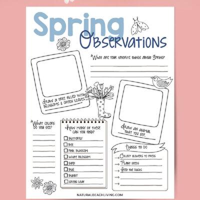 Spring Nature Study for Kids – Free Nature Observation Worksheet