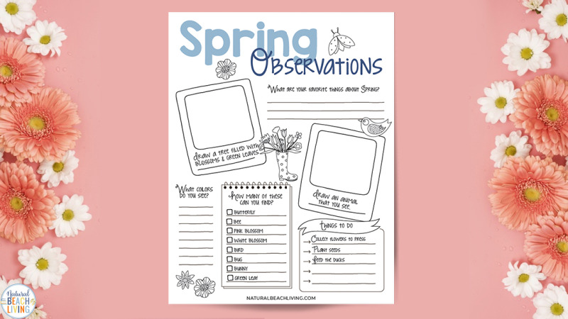 Spring Nature Study for Kids, Here you'll find Easy Spring Nature Study Ideas with great Nature Books for kids and Outdoor Spring Activities. Spring is the perfect time to observe seeds in the garden, plant flowers, learn about bugs, birds, and so much more.