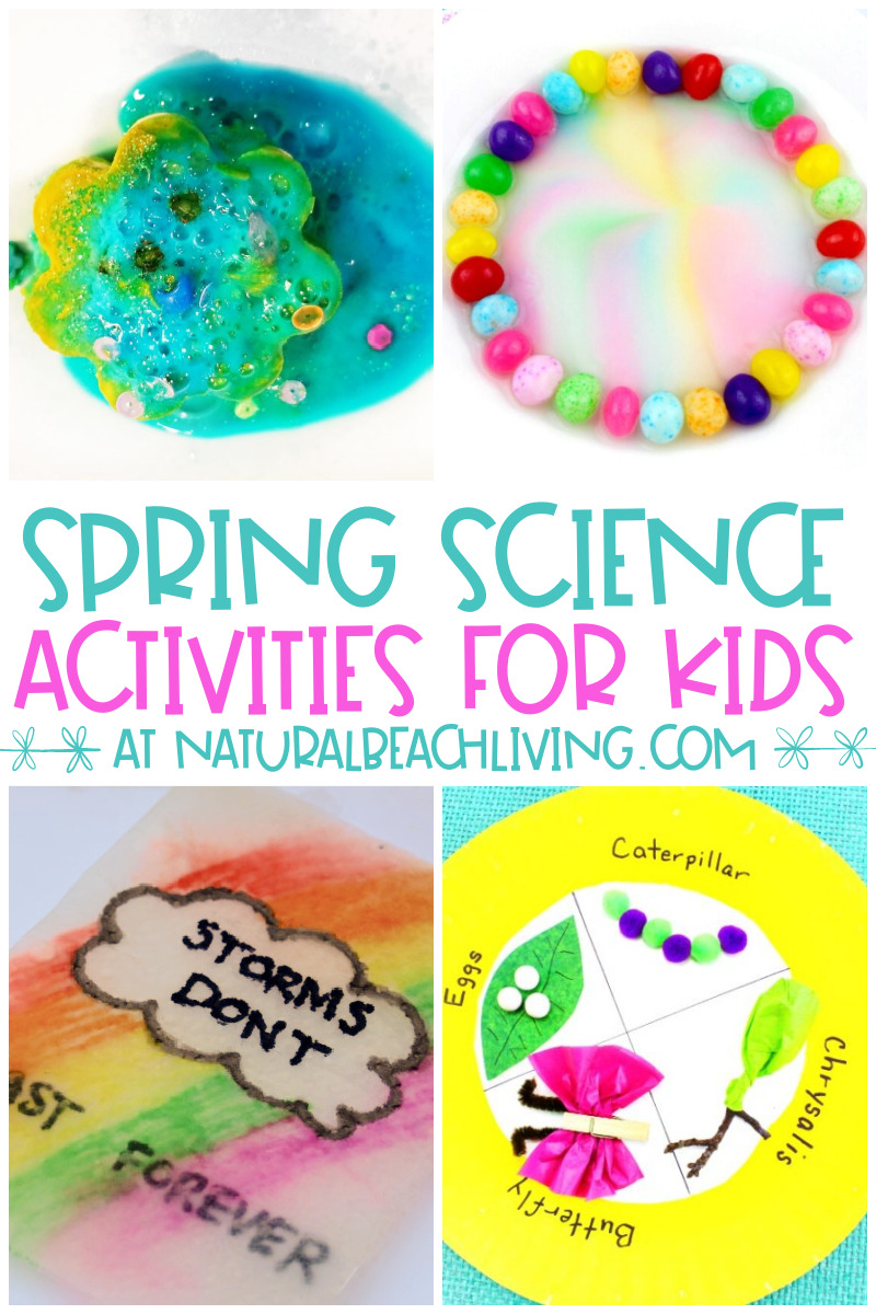 30+ Spring Activities for Preschoolers Science and Nature