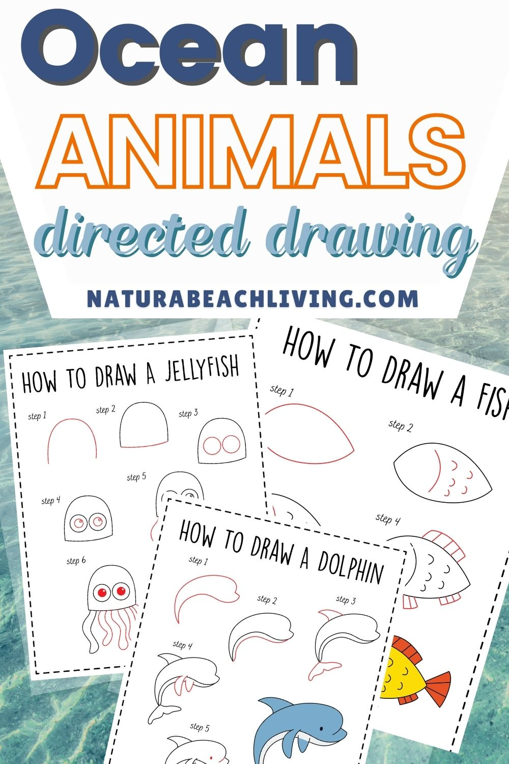 How to Draw Ocean Animals