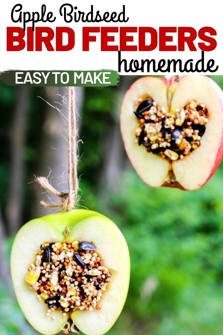 How to Make Apple Birdseed Homemade Bird Feeders, Apple Bird Feeders, These APPLE BIRDSEED BIRD FEEDERS ARE THE BEST! Your backyard birds will flock to your yard with these Easy bird feeders. DIY bird feeders are a great family craft and a fun way to learn about nature. Adding in apples for fall is an extra special bird treat, Homemade Bird Treats, From How to Make bird seed ornaments to DIY birdseed ornaments and Apple Activities for Kids, we have hundreds of fall ideas and activities