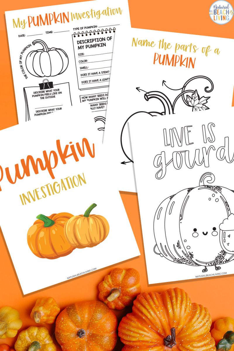 Pumpkin Investigation Worksheets and Activity – This free printable activity and fall fun with this pumpkin investigation activity and parts of a pumpkin activity. They will be asked to collect information for a My Pumpkin Investigation Worksheet by doing a hands-on investigations - Yay Science for kids and fall coloring page
